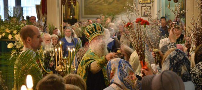 Освящение вербы в Неделю Ваий